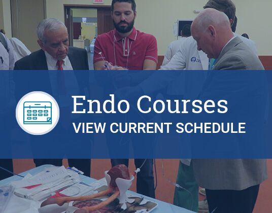 Endo Courses - view current schedule